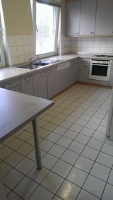 PCSING & REGULAR CLEANING & GARBAGE REMOVAL & TRASH HAULING & PAINTING & PICK UP & DELIVERY & JU... in Ramstein, Germany