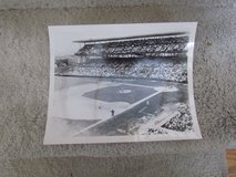 Wrigley Field Photograph 8x10 in Orland Park, Illinois