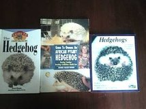 Hedgehog Books in Bolingbrook, Illinois